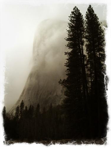 portrait landscapes-0844