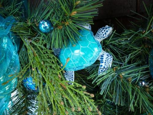 turtle-2-1