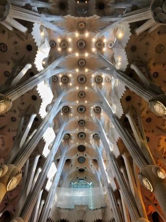 sagrada ceiling